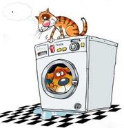Ремонт стиральных машин-автоматов в Орше