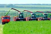 Ищем инвесторов в сельскохозяйственное предприятие